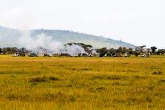Safaribilar som förorenar i Serengeti Arkivfoton