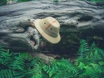 Safarihatt på stupat träd i skogen Arkivbilder