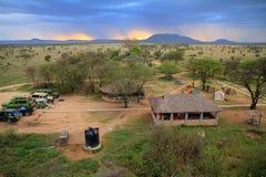 Safariläger i Serengetien Arkivfoto