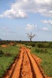 Safarilandskap Arkivfoto