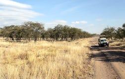Safarisauto Royalty-vrije Stock Foto's