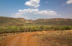 Safariweg im ranthambore Stockbild