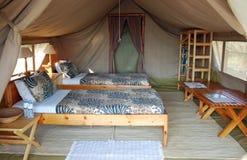 Safarizelt, das einen Luxushotelraum unterbringt Stockbild