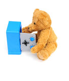 In the safe. Cute bear looking in his safe on white Stock Photos