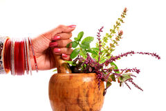 Safe ayurveda Stock Image