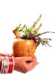 Safe ayurveda stock photo