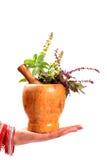 Safe ayurveda royalty free stock photography