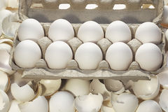 Safe and broken eggs Stock Images