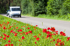 Safe and enjoyable journey. Poppies growing right near the asphalt road, a car driving on the road. Safe and enjoyable journey Stock Photography