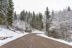 Safe and neat winter road. Clear, safe and neat road to the high hill of the mountain through the Christmas and leafless trees covered by a heavy snow stock images