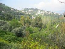 Safed attraverso le montagne verdi fotografia stock libera da diritti