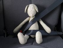 Safety belt Royalty Free Stock Photos