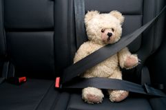 Safety Belt. Teddy Bear buckled with safety belt in a car Royalty Free Stock Photo