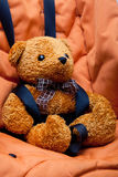Safety belt & teddy bear Royalty Free Stock Images