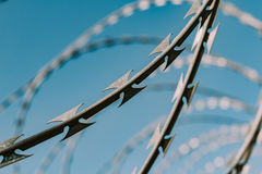 Safety fence of barbed wire. Against the blue sky Royalty Free Stock Image