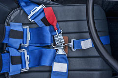 Safety harness. Royalty Free Stock Image