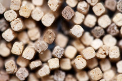 Safety Match Sticks Stock Photo