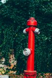 Red fire hydrant surrounded by green grass. Safety measures. Fire protection. Red fire hydrant surrounded by green grass Stock Photography