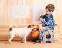 Safety precautions concept with dog carrying hardhat to builder. Jack Russell Terrier at construction site holding hardhat in mouth royalty free stock photos