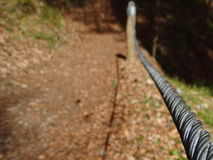 Safety rope in the forest Stock Photography