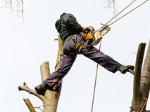 Safety workplace man chainsaw high Stock Photo