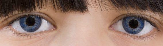 Saffier-blauwe ogen Stock Foto