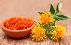 safflower Foto de Stock Royalty Free