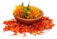 safflower Fotos de Stock