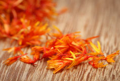 safflower Imagem de Stock Royalty Free