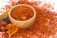 Safflower, False Saffron, Saffron Thistle (Carthamus tinctorius Royalty Free Stock Photos