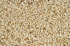 Safflower seeds close up as background Royalty Free Stock Images