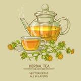 Safflower tea vector illustration Stock Photography