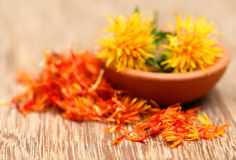 Safflower Royalty Free Stock Image