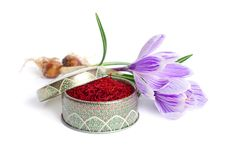 Saffran ?r en krydda som h?rledas fr?n den sativus blomman av krokus bakgrund isolerad white royaltyfria foton