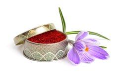 Saffran ?r en krydda som h?rledas fr?n den sativus blomman av krokus bakgrund isolerad white royaltyfri fotografi