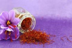 Saffranblommor Royaltyfria Bilder