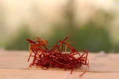 Saffranfokusen zoomar in Fotografering för Bildbyråer