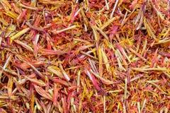 Free Saffron Royalty Free Stock Photos - 38048368