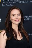 Saffron Burrows Stock Image