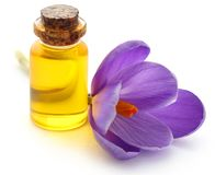 Saffron crocus flower with extract. In a bottle over white Stock Photo