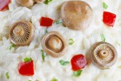 Saffron Milk Cap mushroom rice background Royalty Free Stock Photos
