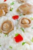 Saffron Milk Cap mushroom rice background Royalty Free Stock Photo