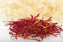 Saffron of morocco Royalty Free Stock Images