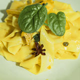Saffron pappardelle pasta Royalty Free Stock Photo