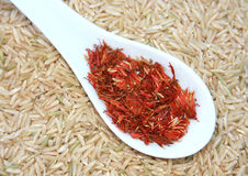 Saffron and Rice Royalty Free Stock Photos