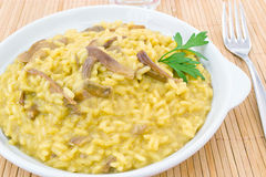 Saffron risotto with porcini Royalty Free Stock Photos