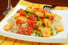Saffron Shrimp and Rice Royalty Free Stock Photography
