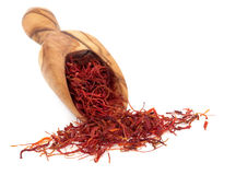 Saffron Spice Royalty Free Stock Images
