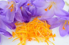 Saffron spice close up Royalty Free Stock Images