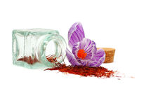 Saffron spice and crocus flower. On white Royalty Free Stock Image